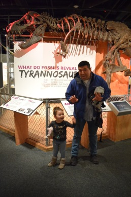 Smithsonian Museum of Natural History Dinosaurs 3