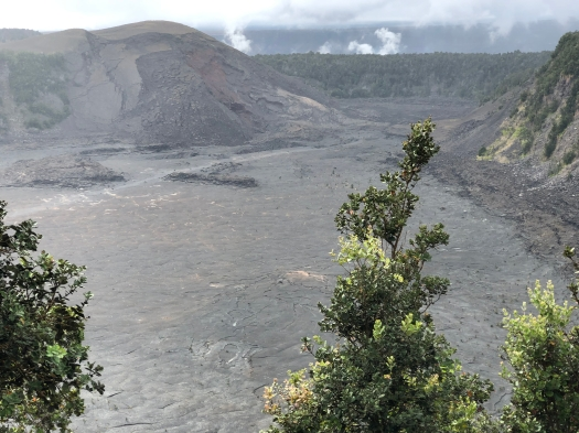 Hawaii Volcanoes National Park Crater 1