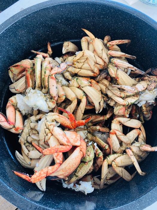 Roche Harbor Crabbing 2